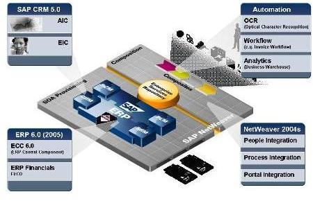 Data services sap download